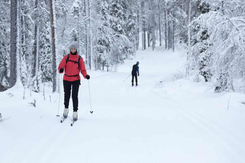 cross country skiing jackson hole activities