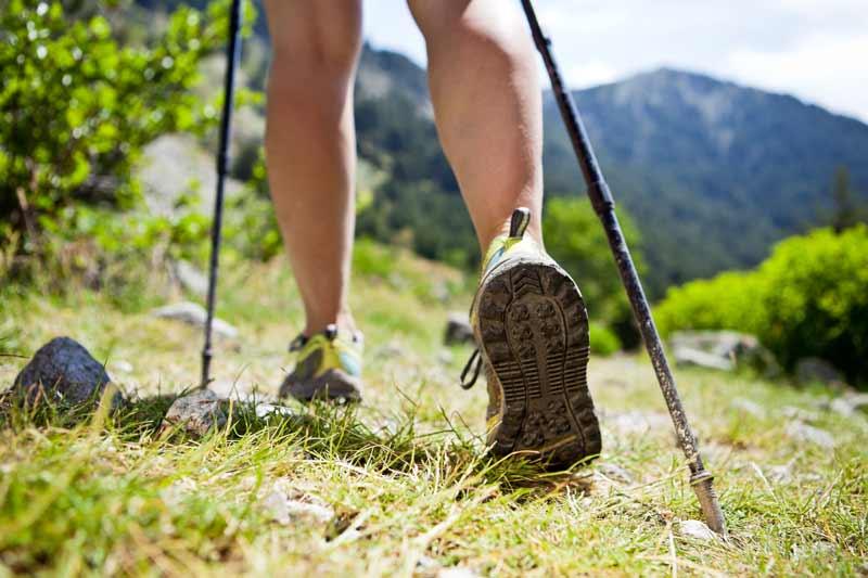 hiking jackson hole activities